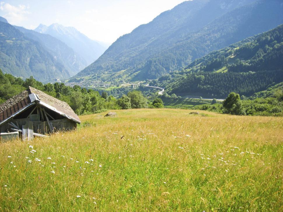 Download Free Stock HD Photo of alpine field Online