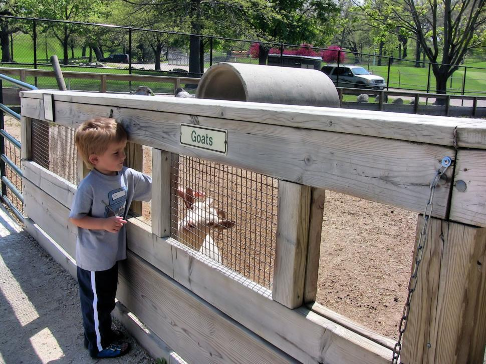 Download Free Stock Photo of Petting Zoo