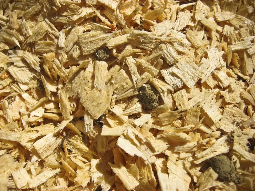 Download Free Stock Photo of wood chips