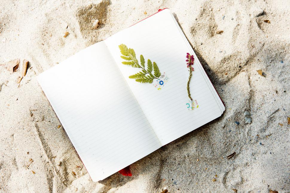 Download Free Stock Photo of Journal on the Beach