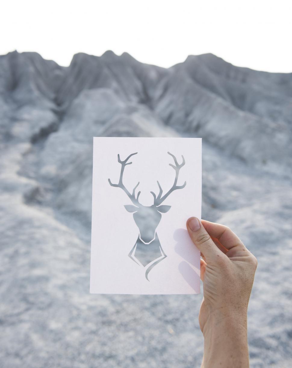 Download Free Stock Photo of Paper Deer