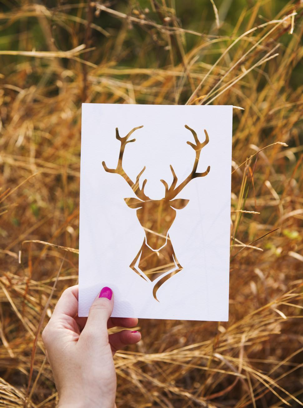 Download Free Stock HD Photo of Wild Paper Deer Cutout Online