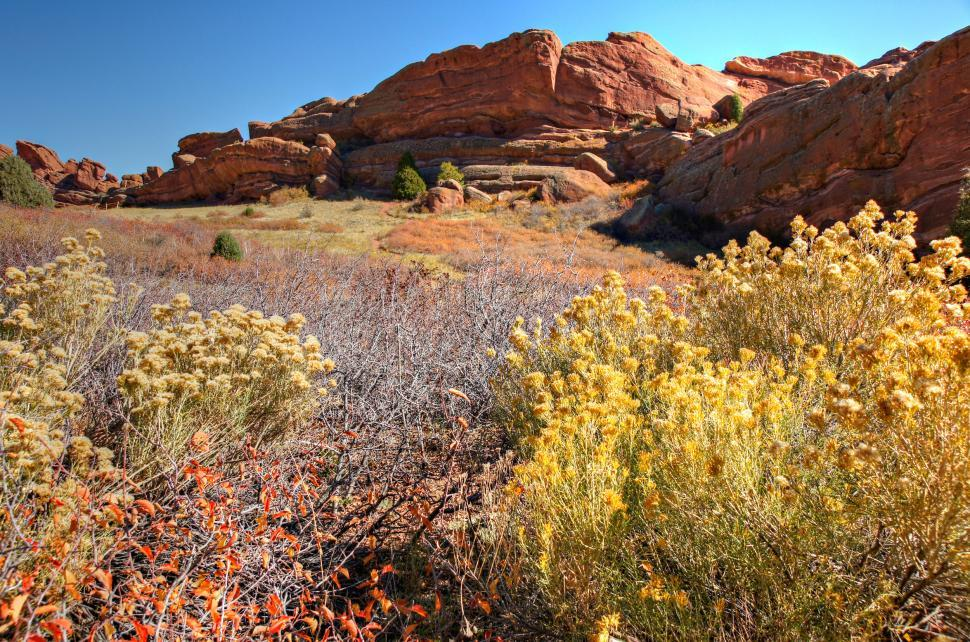 Download Free Stock Photo of Red Rocks Park Afternoon