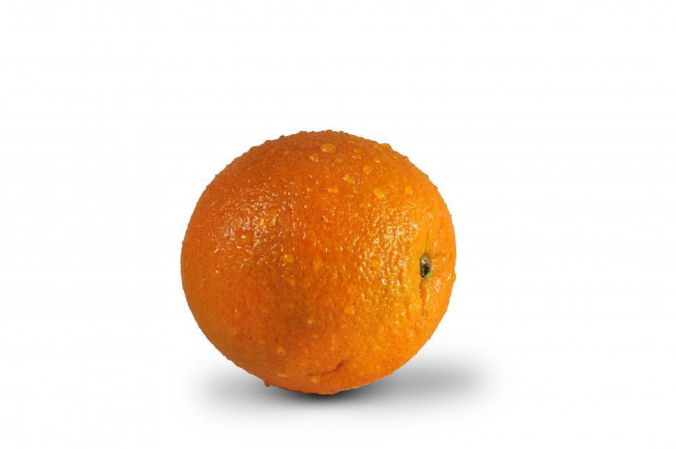 Download Free Stock HD Photo of wet orange Online