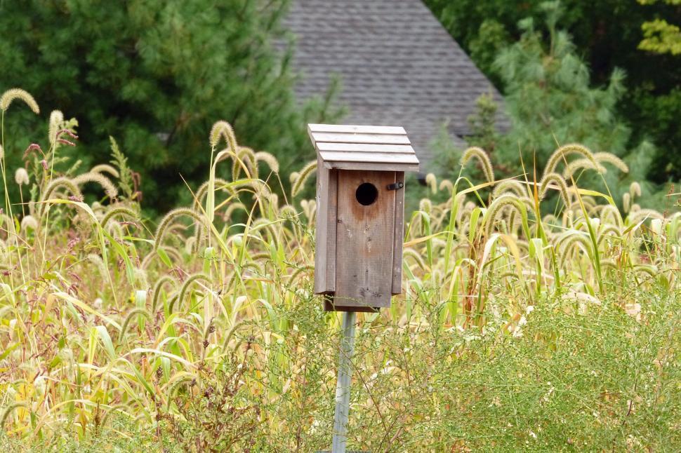 Download Free Stock HD Photo of Birdhouse in Field Online