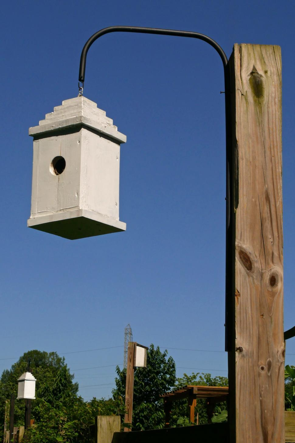 Download Free Stock Photo of Birdhouses Hang on Posts