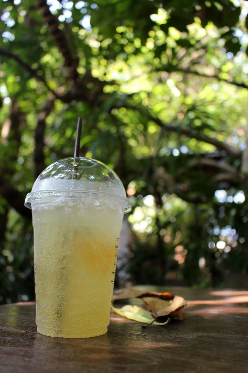 Download Free Stock HD Photo of Cup of iced lemon tea outside on a table in a tropical garden  Online