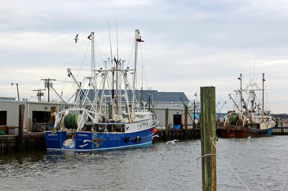 Download Free Stock Photo of Fishing Boats Moored - Commercial Fishing