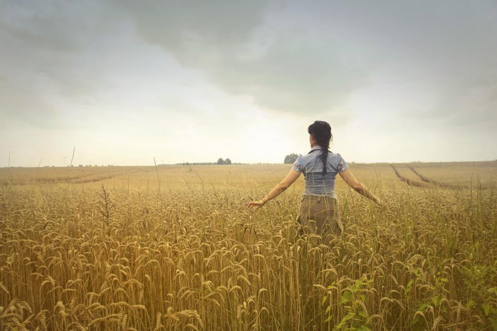 Download Free Stock Photo of Woman Standing on Rice Field during Cloudy Day