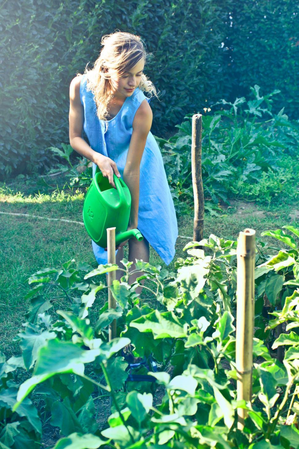 Download Free Stock Photo of A beautiful young woman watering the plant in the garden