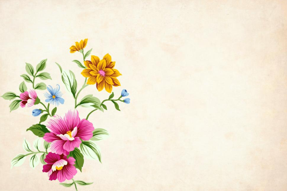 Download Free Stock Photo of colorful flower background
