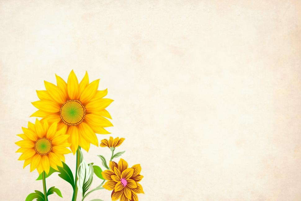 Download Free Stock Photo of yellow flower background with copyspace