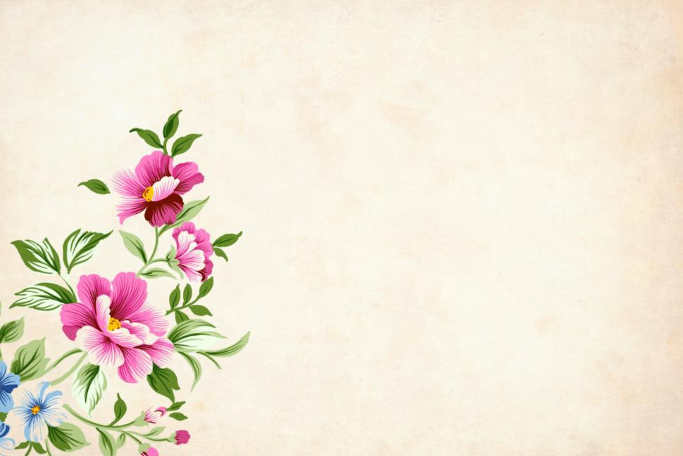 Download Free Stock HD Photo of light flower background Online