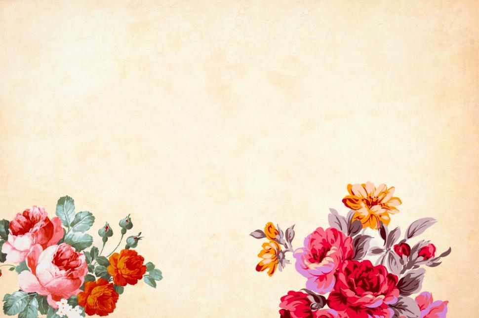 Download Free Stock Photo of Flower Background - Red flower illustrations