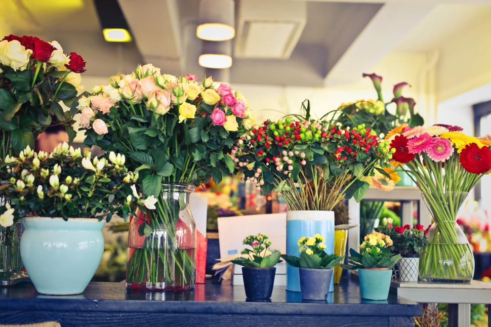 Download Free Stock Photo of A flower shop display section with variety of flowers