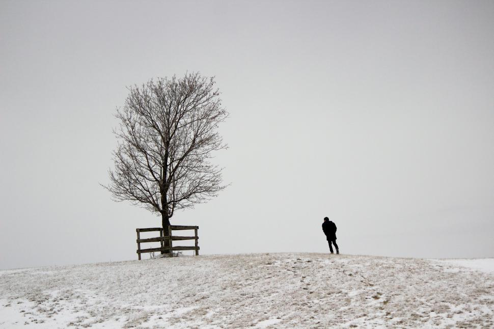 Download Free Stock Photo of A figure and a snowy tree