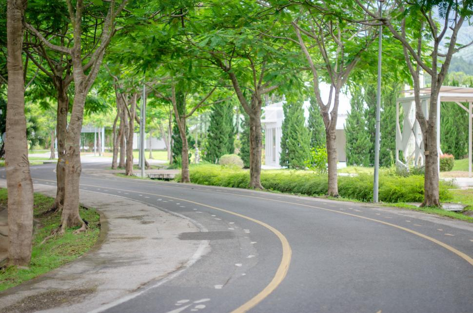 Download Free Stock HD Photo of Green Road  Online