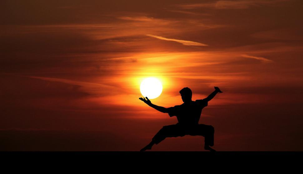 Download Free Stock Photo of Kung Fu Silhouette