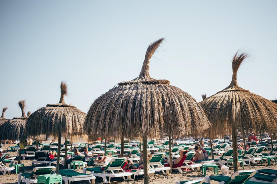 Download Free Stock Photo of Grass umbrellas on the beach resort