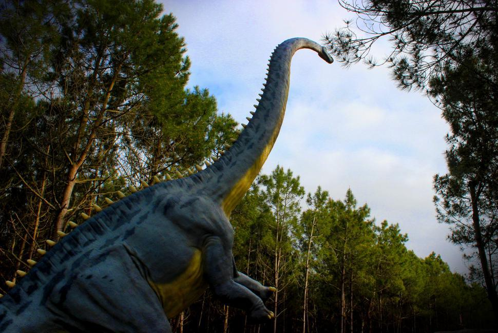 Download Free Stock HD Photo of Diplodocus - Dinosaurs - Sauropod - Jurassic Online