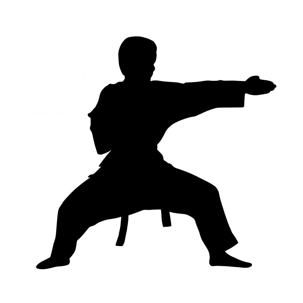Download Free Stock Photo of karate fighter Silhouette