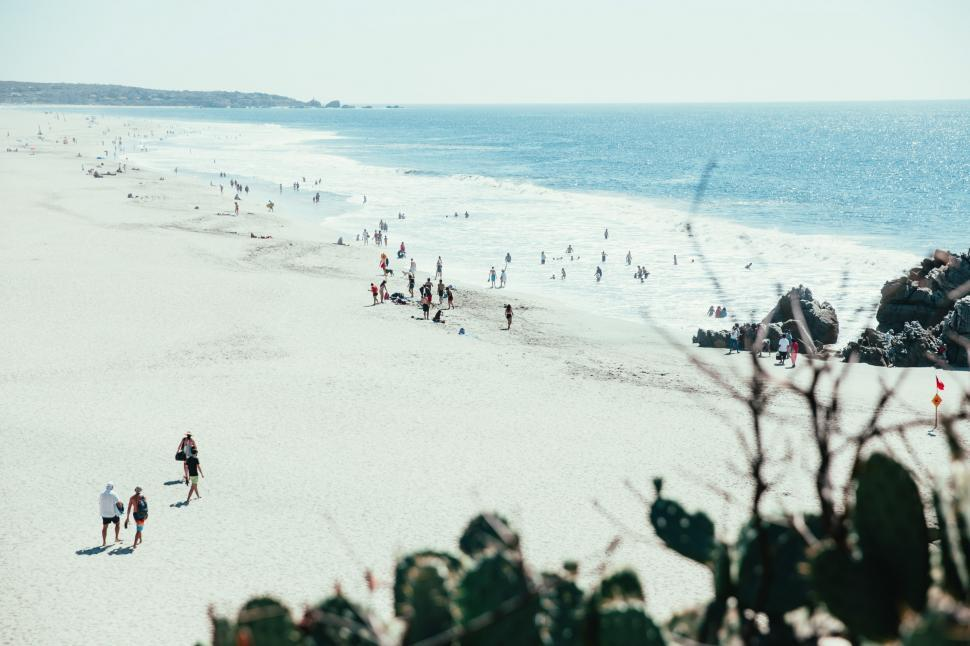 Download Free Stock Photo of People walking on the beach
