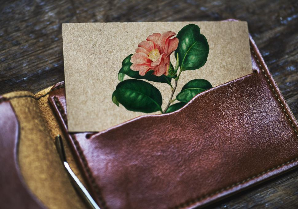 Download Free Stock HD Photo of Close up of a flower in a picture half inserted in a wallet pock Online