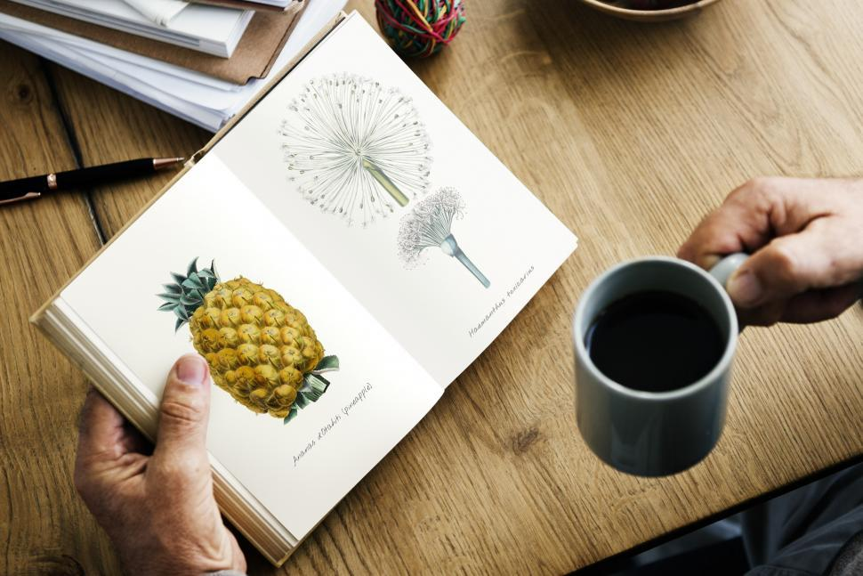 Download Free Stock Photo of Close up of a person s hands holding a botany book and a coffee