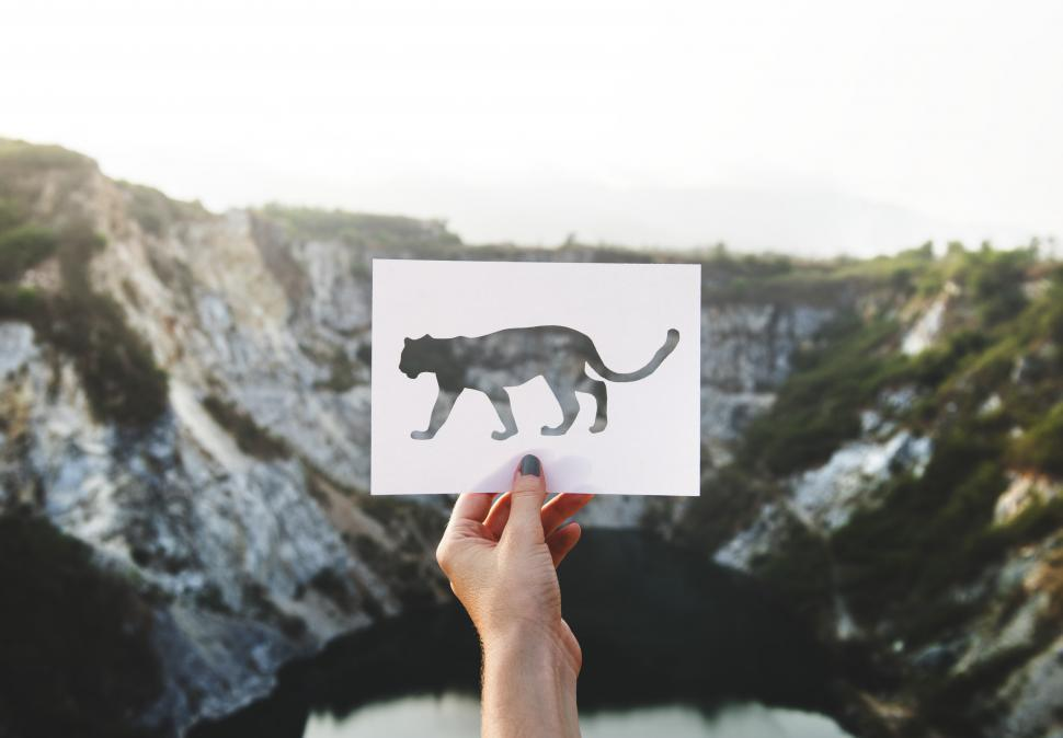 Download Free Stock Photo of A female hand holding a leopard shaped paper cut out template