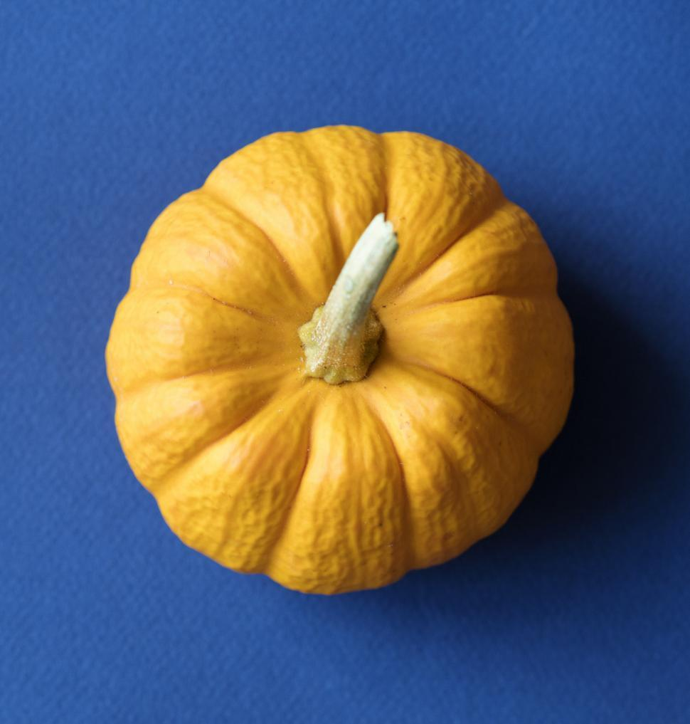Download Free Stock HD Photo of Flat lay of a yellow pumpkin Online