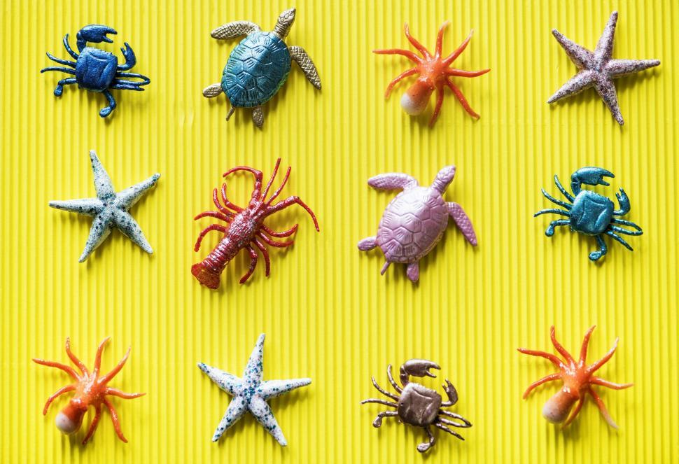 Download Free Stock Photo of Flat lay of toy sea animals on yellow surface