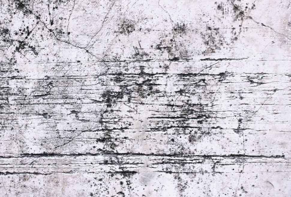 Download Free Stock Photo of Scratched white concrete wall texture