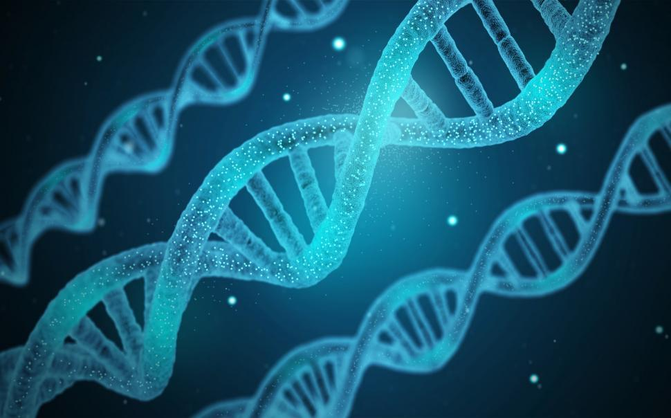 Download Free Stock Photo of DNA - Genetics - Genes