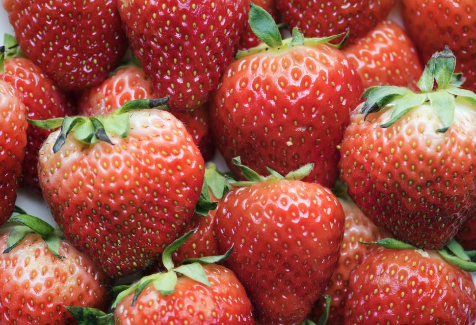Download Free Stock Photo of Close up of strawberries