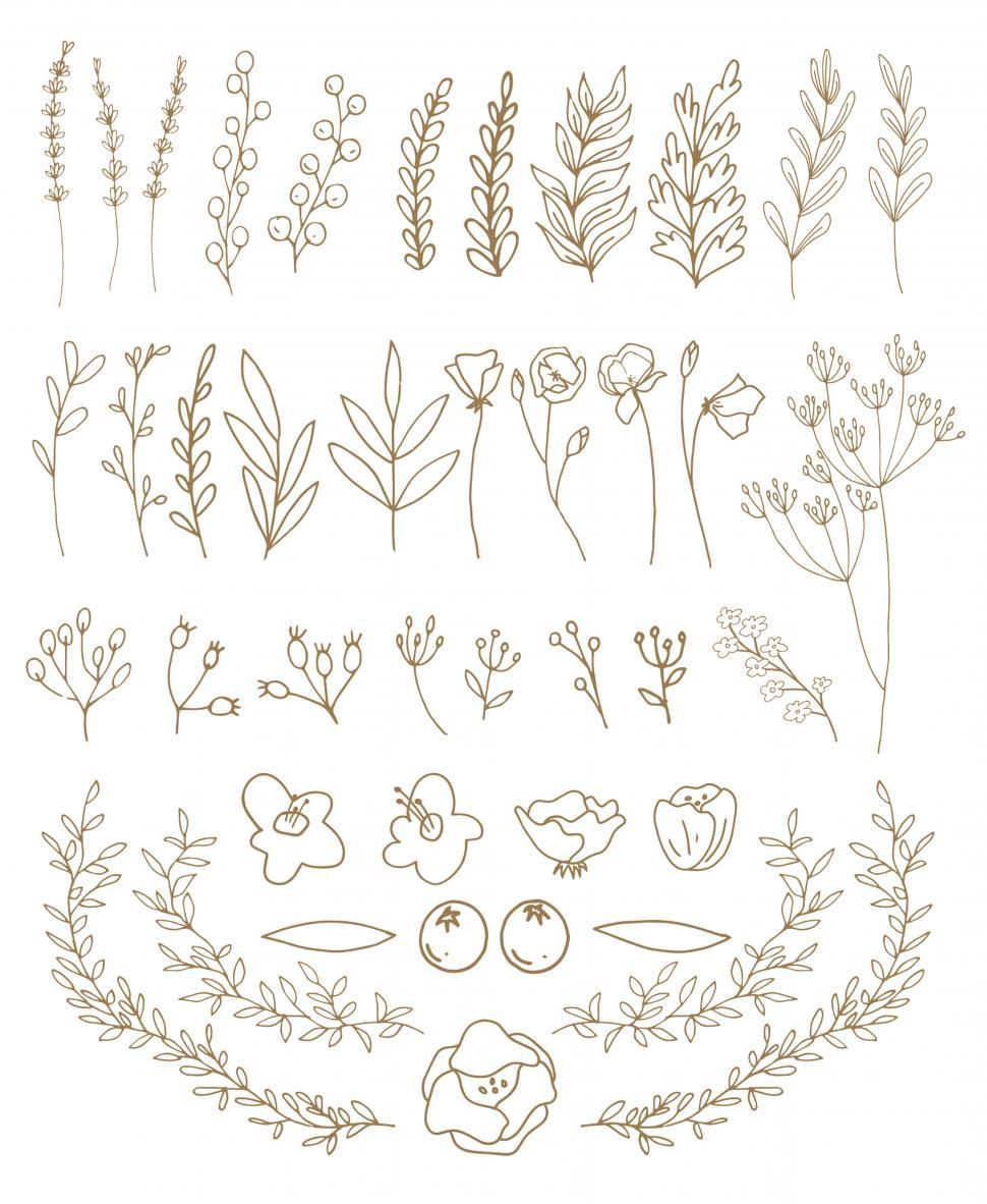 Download Free Stock HD Photo of A collection of flowers and leaves vector graphics Online