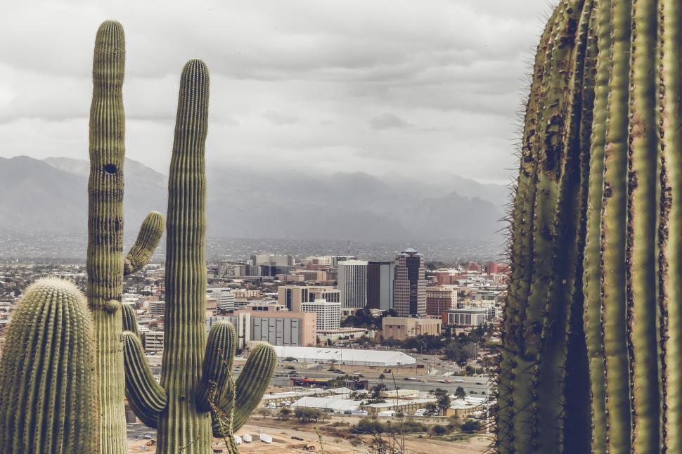 Download Free Stock Photo of Toned View of Downtown Tucson