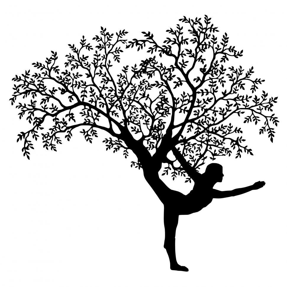 Download Free Stock Photo of yoga tree
