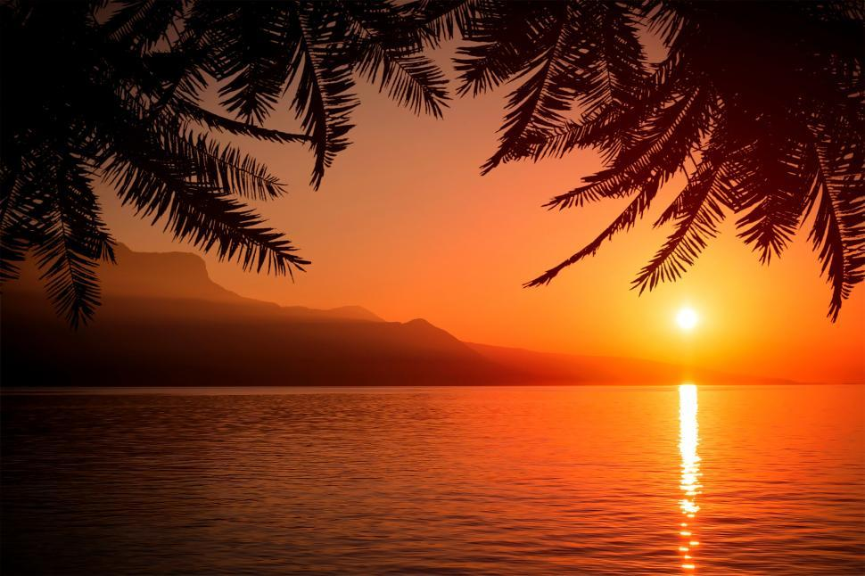 Download Free Stock HD Photo of Summer Sunset with Palm Trees Online