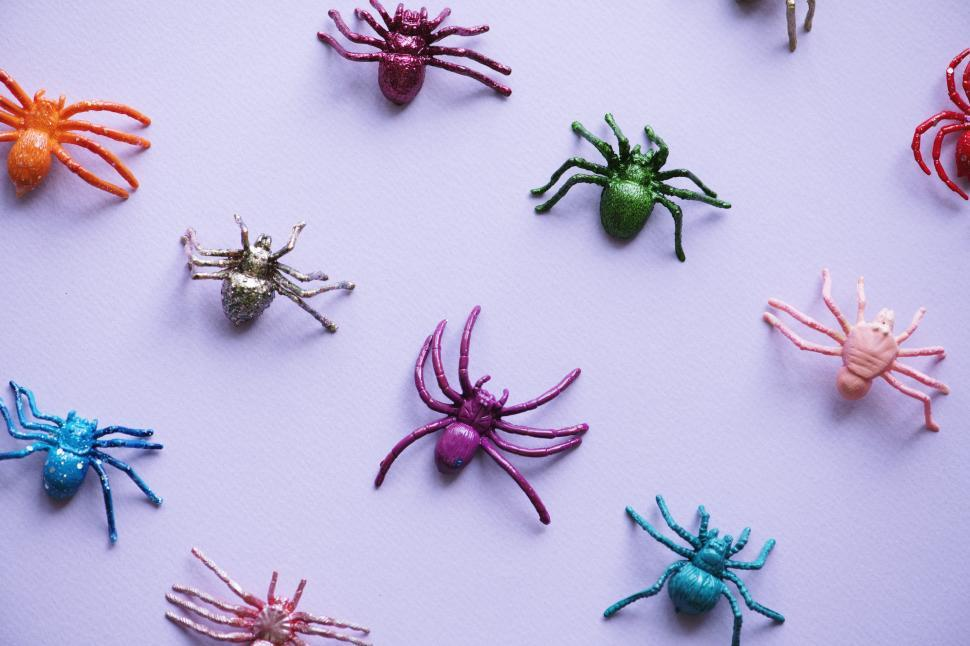 Download Free Stock Photo of Plastic toy spiders