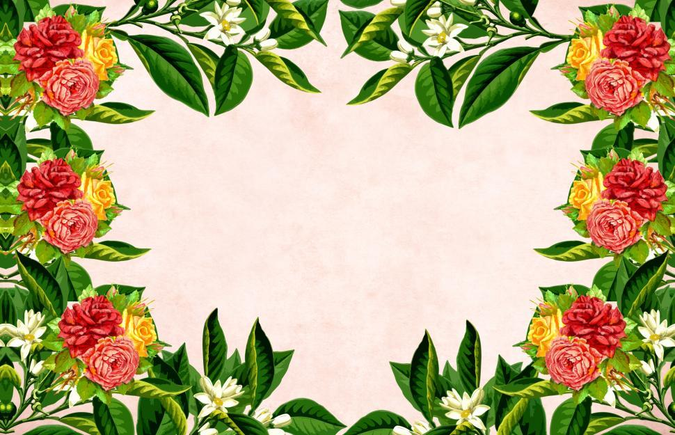 Download Free Stock Photo of Flower background - Large Blooms