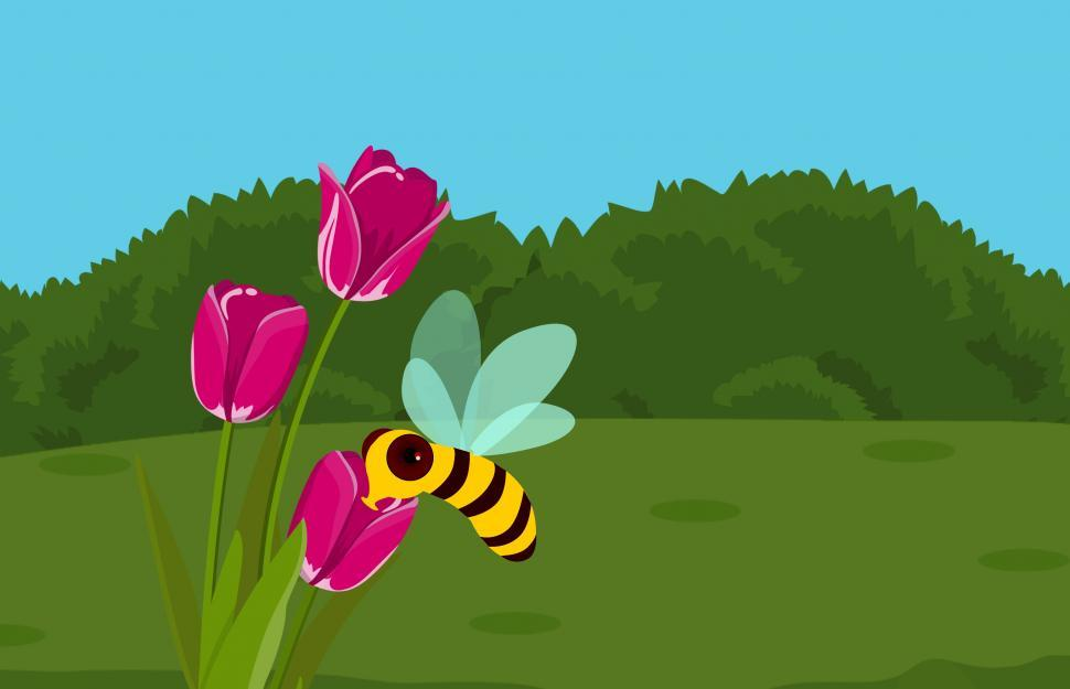Download Free Stock HD Photo of Bee and flower  Online