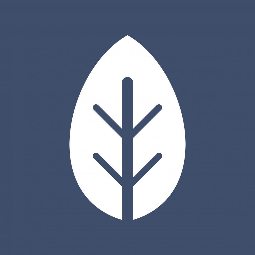 Download Free Stock Photo of Leaf vector icon