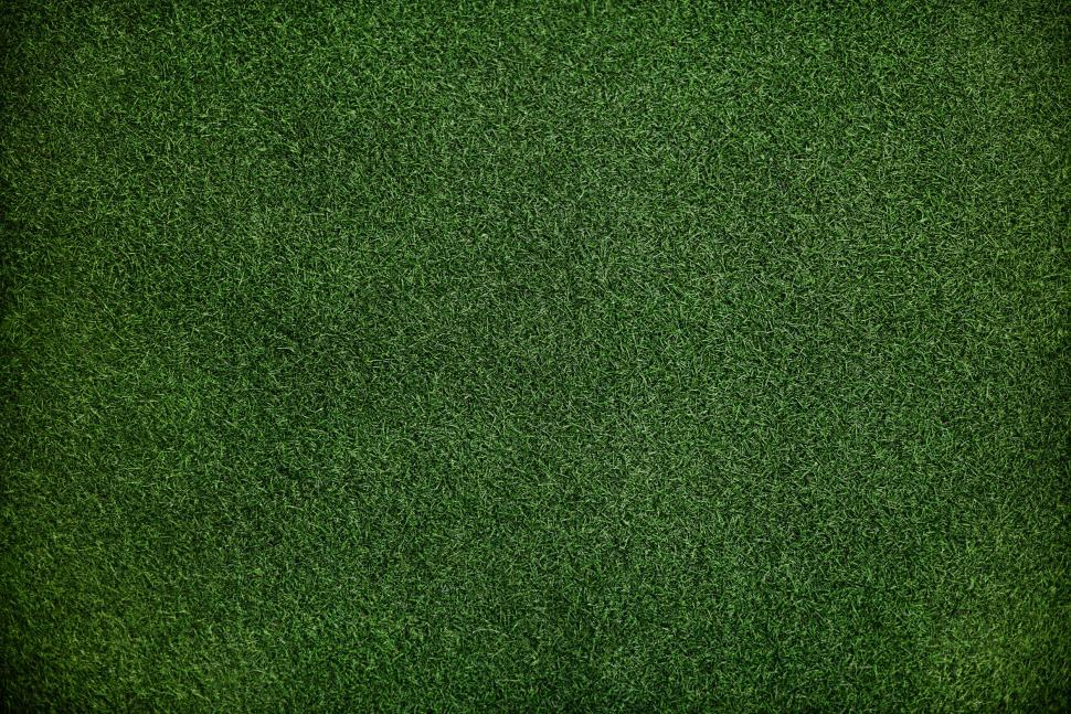 Download Free Stock HD Photo of Close up of lush green grass Online