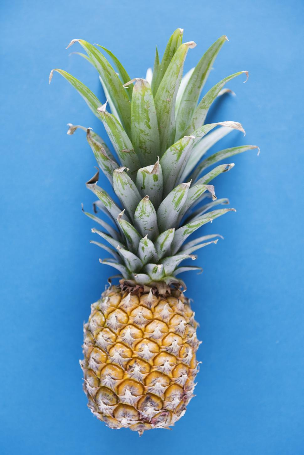 Download Free Stock HD Photo of A pineapple on blue background Online