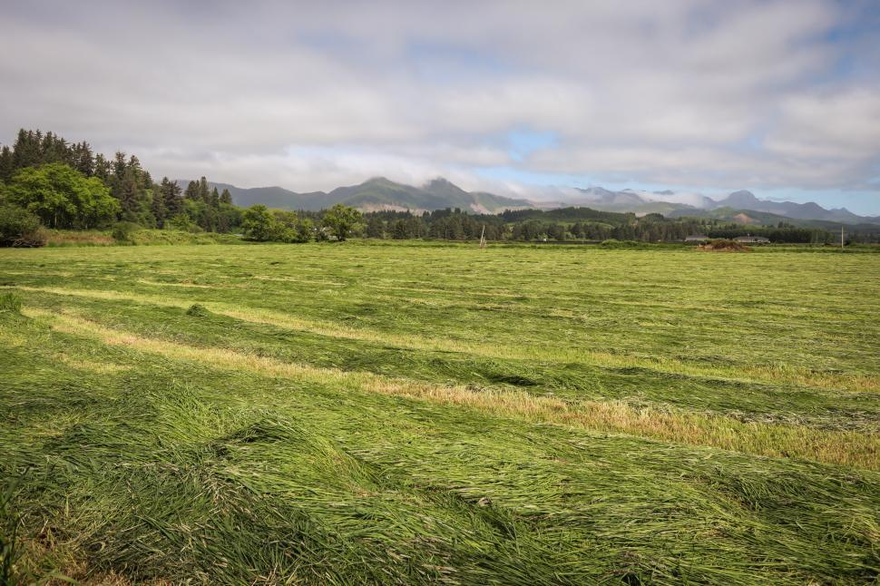 Download Free Stock HD Photo of Grassy field with distant farmhouse Online