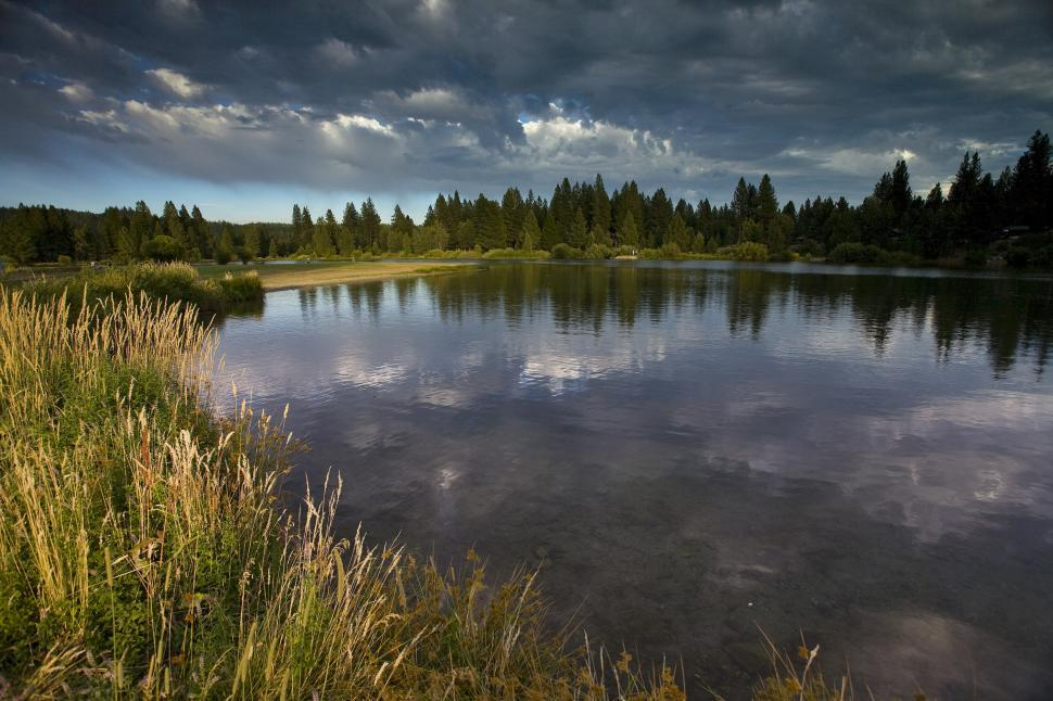 Download Free Stock HD Photo of marshy shoreline of mountain lake Online