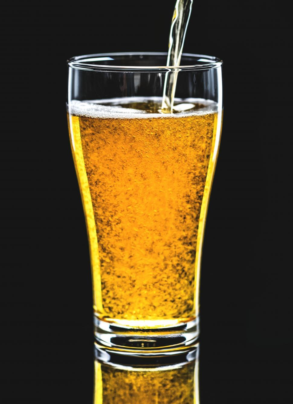 Download Free Stock Photo of Amber beer being poured into a pint glass