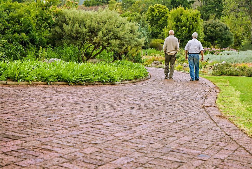 Download Free Stock Photo of old friends conversation people talking old people friendship chatting talking walking reminiscing remembering strolling sharing ideas getting old memories elderly