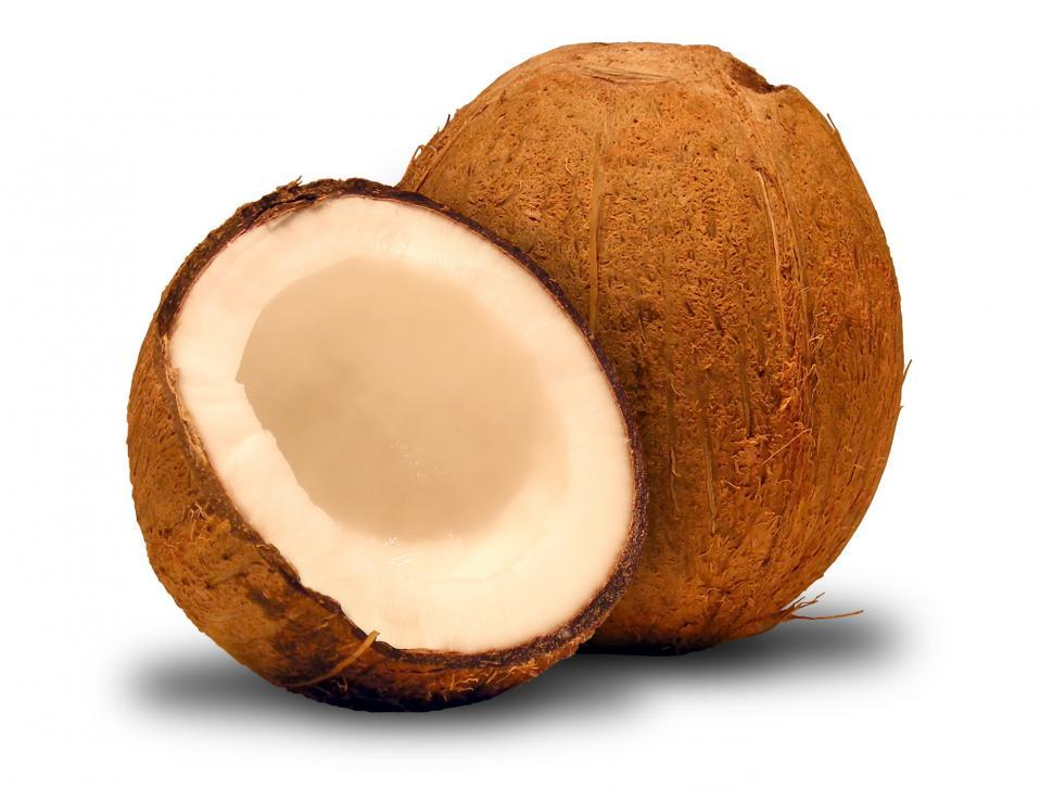 Download Free Stock HD Photo of Coconut Online