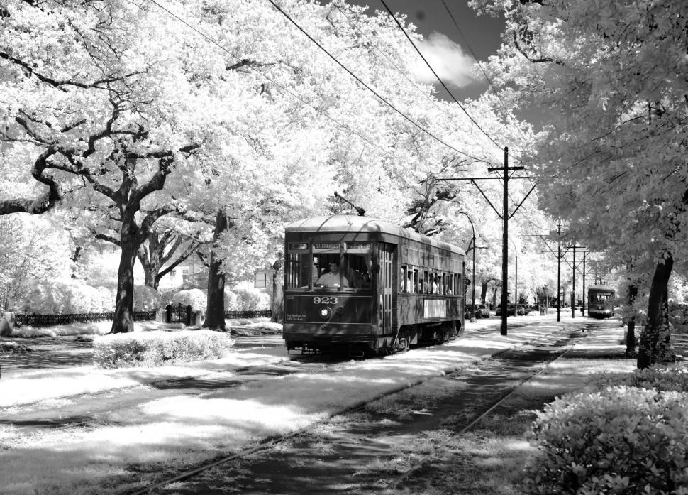 Download Free Stock Photo of Tram/Streetcar in downtown New Orleans - B&W